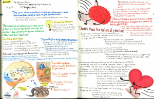Forces of habit book summary
